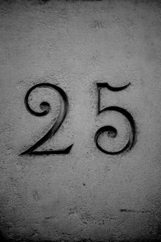 25 logo